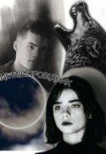 """Обкладинка книги """"Місяць мій провідник"""""""