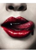 """Обложка книги """"Любовь вампира """""""