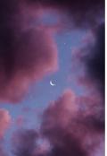 """Обложка книги """"Летняя ночь"""""""