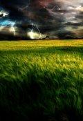 """Обложка книги """"По ту сторону поля с высокой травой"""""""