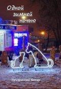"""Обложка книги """"Одной зимней ночью"""""""