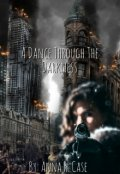 "Book cover ""A Dance Through The Darkness"""