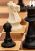 "Обложка книги ""Игра в шахматы"""