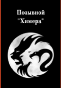 """Обложка книги """"Позывной """"Химера"""""""""""