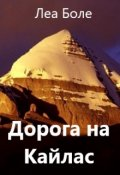 "Обложка книги ""Дорога на Кайлас"""