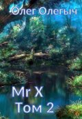 """Обложка книги """"Мистер Икс. Том 2."""""""