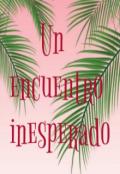 """Cubierta del libro """"Un encuentro inesperado"""""""