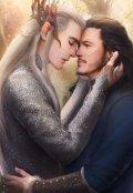 """Обложка книги """"Любимый адан короля эльфов"""""""