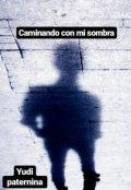 """Cubierta del libro """"caminando con mi sombra"""""""