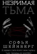 """Обложка книги """"Незримая Тьма"""""""