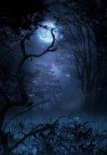 """Обложка книги """"В объятьях безликой ночи"""""""