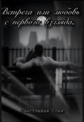 """Обложка книги """"Встреча или любовь с первого взгляда"""""""