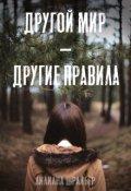 """Обложка книги """"Другой мир - другие правила"""""""