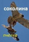 """Обложка книги """"Соколина(сказ 6-й)"""""""