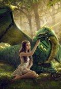 """Обложка книги """"Куб Судьбы или Полюбил как-то дракон бабочку."""""""