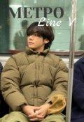 """Обложка книги """"Метро: Line V"""""""