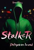 """Cubierta del libro """"Stalker Peligro en la red"""""""