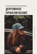 """Обложка книги """"Дорожное приключение """""""