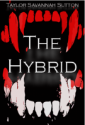 """Book cover """"The Hybrid"""""""