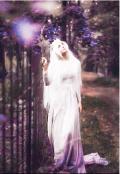 """Обложка книги """"Радуга создаёт Белый или  Академия Магии для Белой"""""""