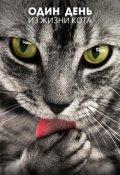 """Обложка книги """"Один день из жизни кота"""""""