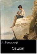 "Обложка книги ""Сашка Кузнецов. Сашок"""
