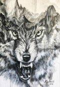 "Обложка книги ""Время волка"""