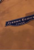 """Обложка книги """"Улица Лунных Кошек"""""""