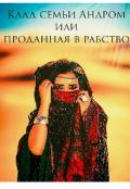 """Обложка книги """"Клад семьи Андром или проданная в рабство"""""""