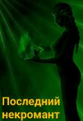 """Обложка книги """"Последний некромант"""""""