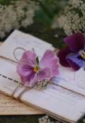 """Обложка книги """"Письмо"""""""