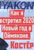 """Обложка книги """"Как я встретил Новый 2020 Новый год в Оймяконе!"""""""