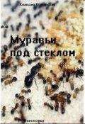 """Обложка книги """"Муравьи под стеклом"""""""
