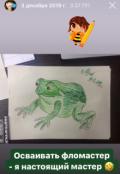"""Обложка книги """"Жаба на болоте"""""""