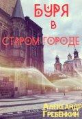 """Обложка книги """"Буря в старом городе """""""