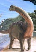 """Обложка книги """"Я верю в динозавров"""""""
