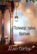 """Обложка книги """"Полимор: Тайна братьев """""""