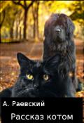 """Обложка книги """"Рассказ котом"""""""