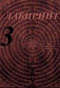 """Обложка книги """"Лабиринт 3"""""""