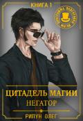 """Обложка книги """"Цитадель Магии: Негатор"""""""