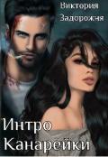 """Обложка книги """"Интро Канарейки"""""""