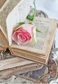 """Обложка книги """"Поэзия на бумажных страницах"""""""