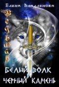 """Обложка книги """"Ведьмак. Белый волк и чёрный камень"""""""