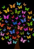 """Обложка книги """"Тёмка и бабочка"""""""