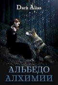 """Обложка книги """"Альбедо алхимии"""""""