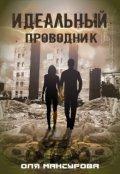 """Обложка книги """"Идеальный проводник"""""""