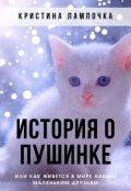 """Обложка книги """"История о Пушинке"""""""