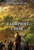 """Обложка книги """"Лабиринт снов"""""""