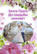 """Обложка книги """"До свадьбы заживёт"""""""
