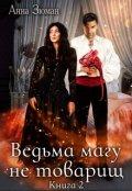 """Обложка книги """"Ведьма магу не товарищ. Книга 2"""""""